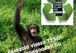 Kiszámoltad már? Hány mobil ér egy gorillát?